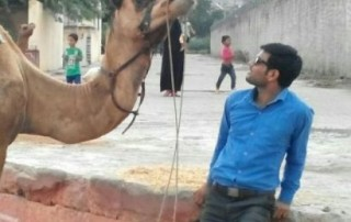Different Jaipur Sightseeing With Camel Safari