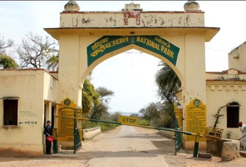 Sariska Pational Park Gate